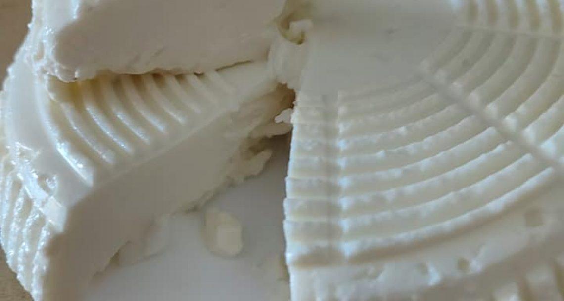 גבינה ביתית