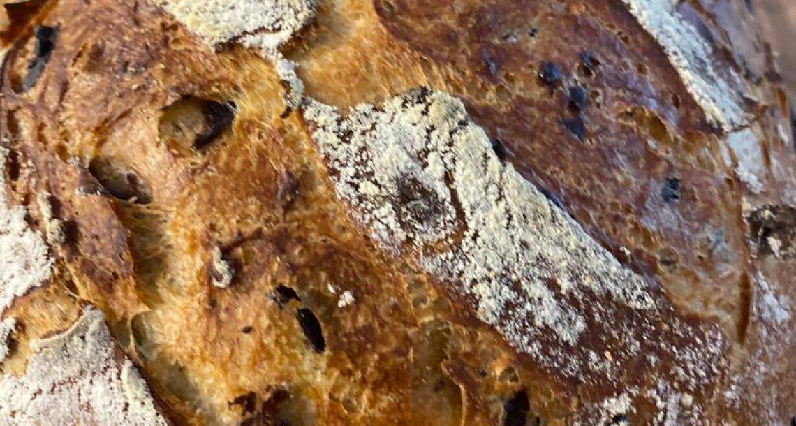 לחם זיתים עם תבלינים ללא לישה