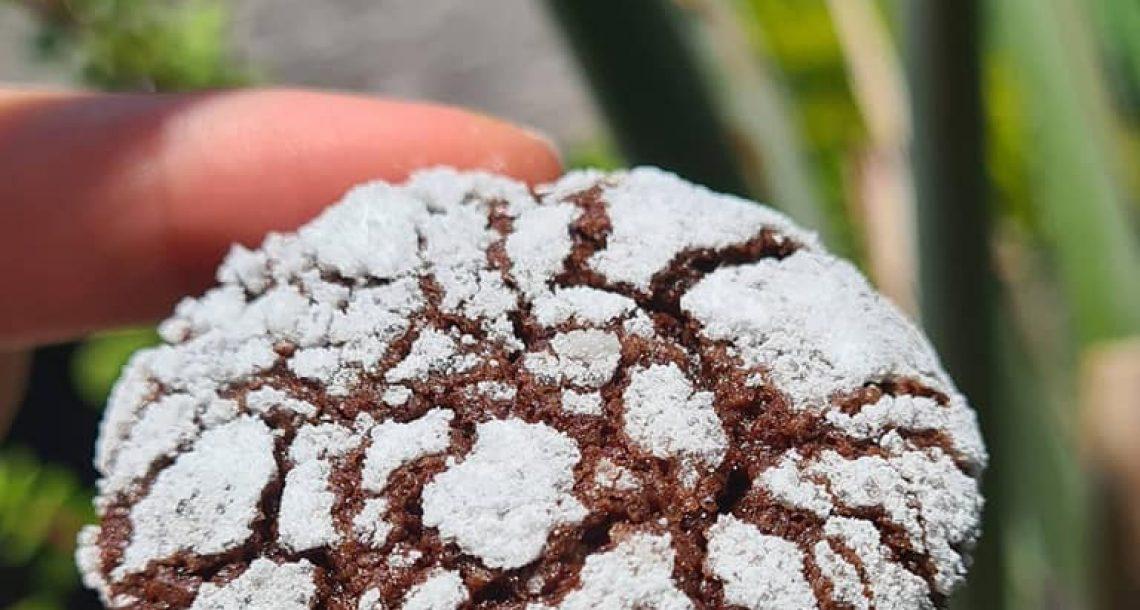 עוגיות שלגיה עם מלא סוכר – כולל טיפים